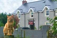Bay Cottage B&B Crumlin
