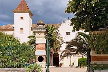 Chateau Saint Martin Des Champs B&B Murviel Les Beziers