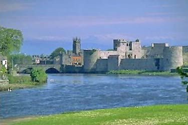 Castle Moor, Castletroy