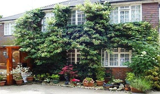 Da Vinci Guesthouse Crawley