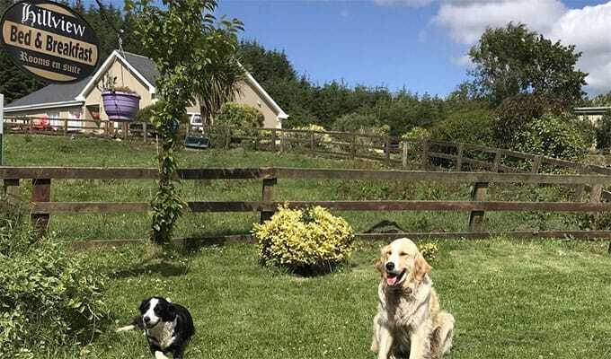 Hillview Farm B&B Ennis