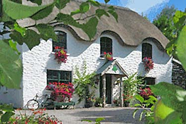 bnb reviews Lissyclearig Thatch Cottage B&B