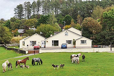 Muckross Stables, Killarney