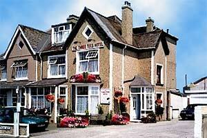 The Three Tees Hotel Newquay