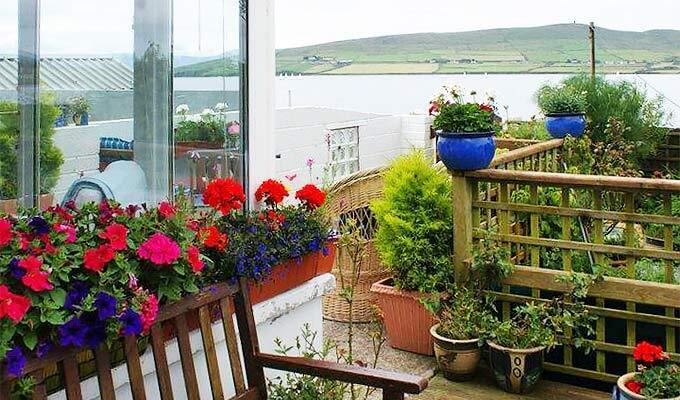 Blooming Wildflower Cottage B&B Dingle